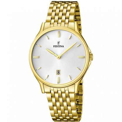 خرید آنلاین ساعت مردانه فستینا F16746-1